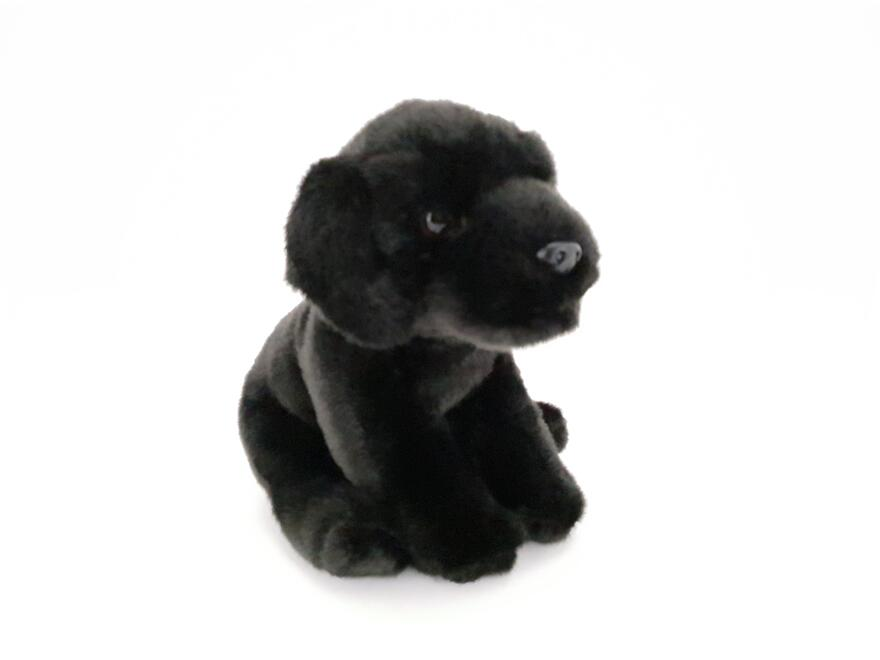 Labrador musta 25cm UT